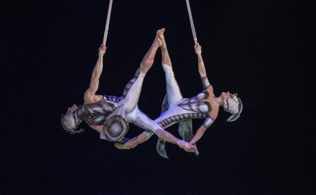 Cirque Du Soleil Swings Back Into Boston With Ovo Sept